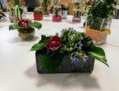 Blumenstecken (11)